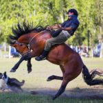 Traditional gaucho festival in the Pampas, Argentina