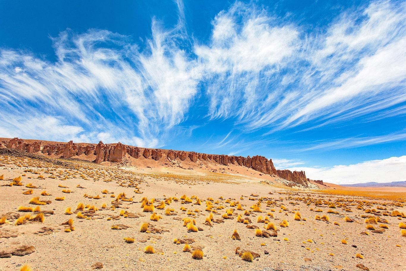 The Tara salt flat, Chile