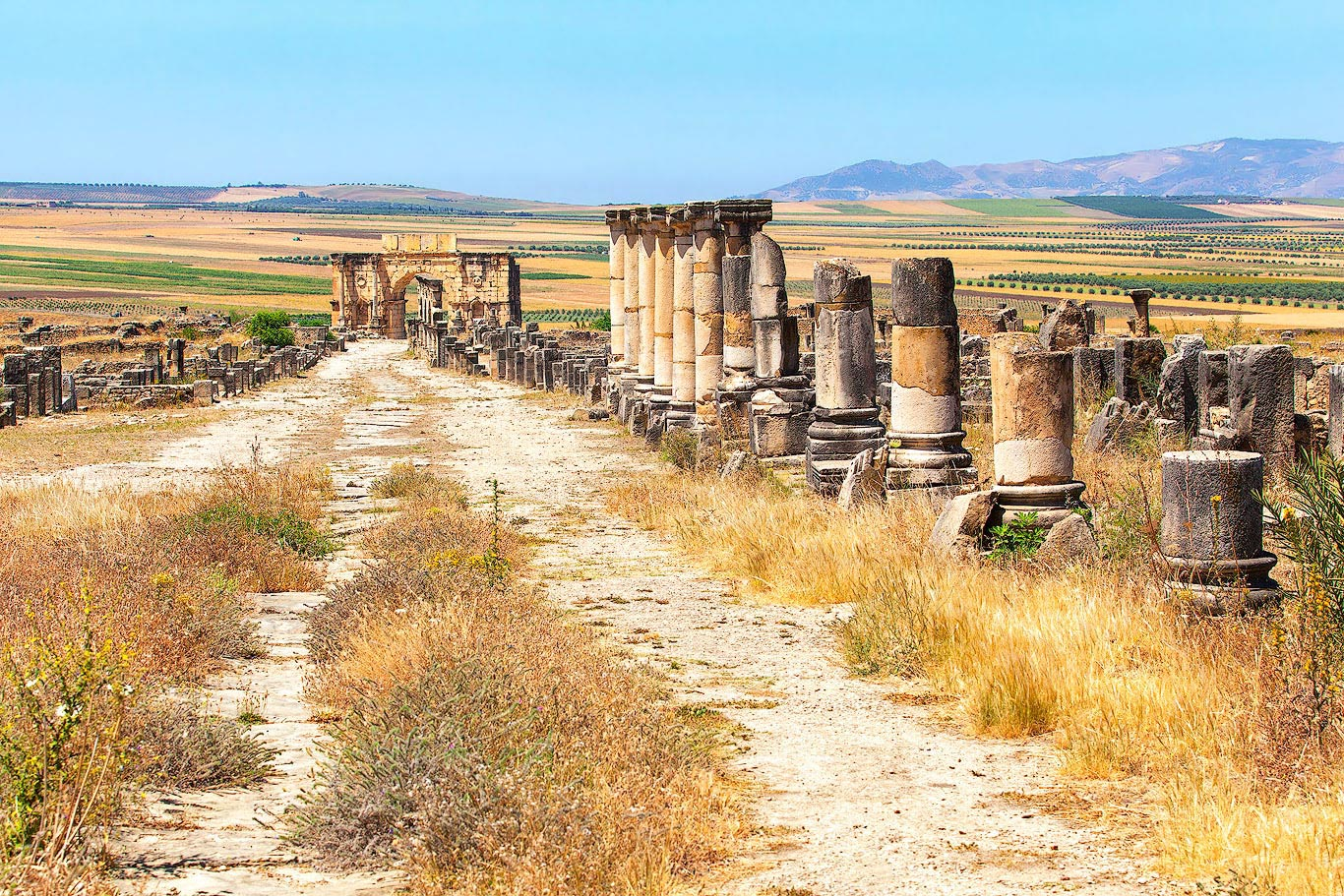 The ruins of Volubilis in Morocco