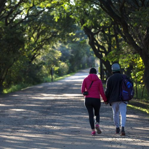 Walking in the Ecological Reserve, Buenos Aires
