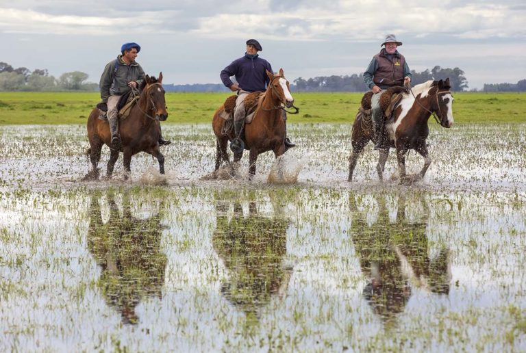 Travel photography in the argentine pampas