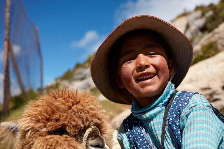 bolivian girl alpaca