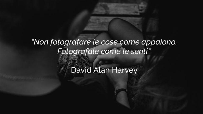 frasi-fotografia-harvey